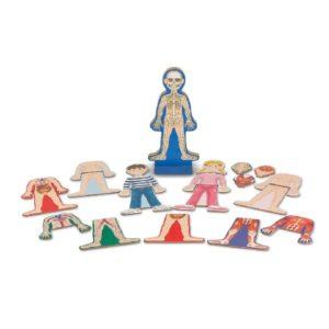 магнитная игра тело человека мелисса даг
